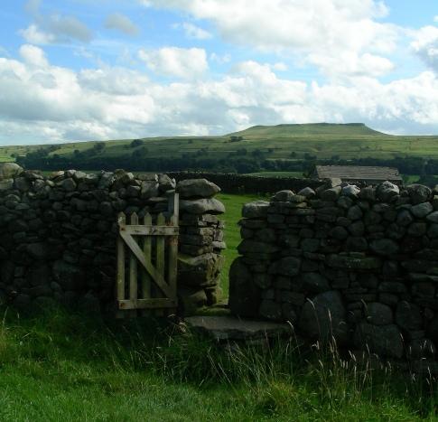 an open gate by Rachel Hartland