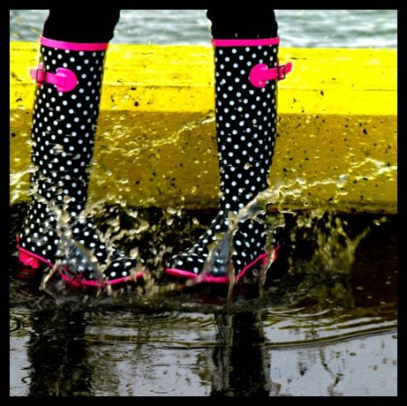 splash!-Anne Yungwirth